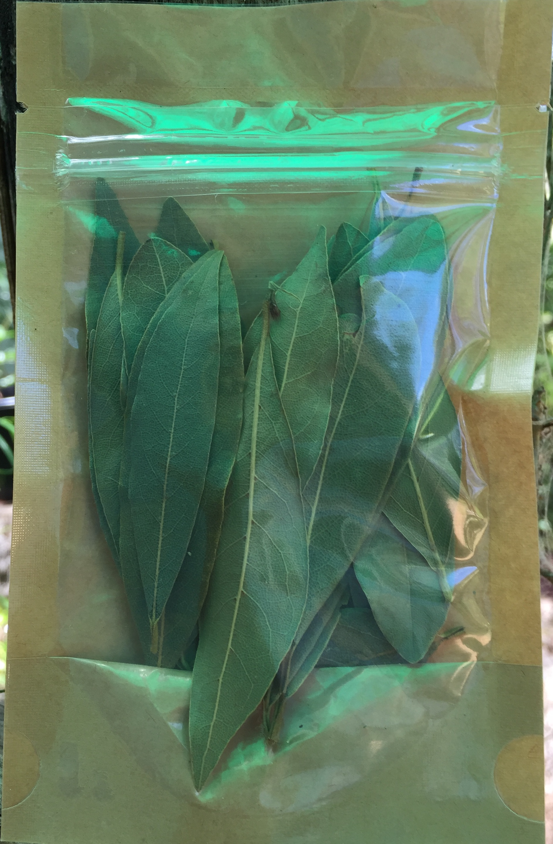 Dried Bay Leaves - New packaging