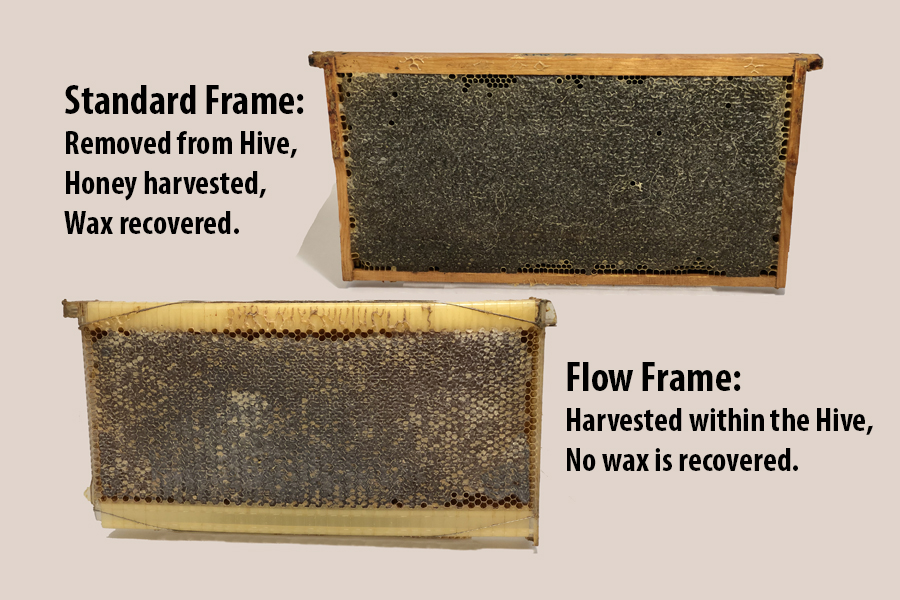 Different types of Frame