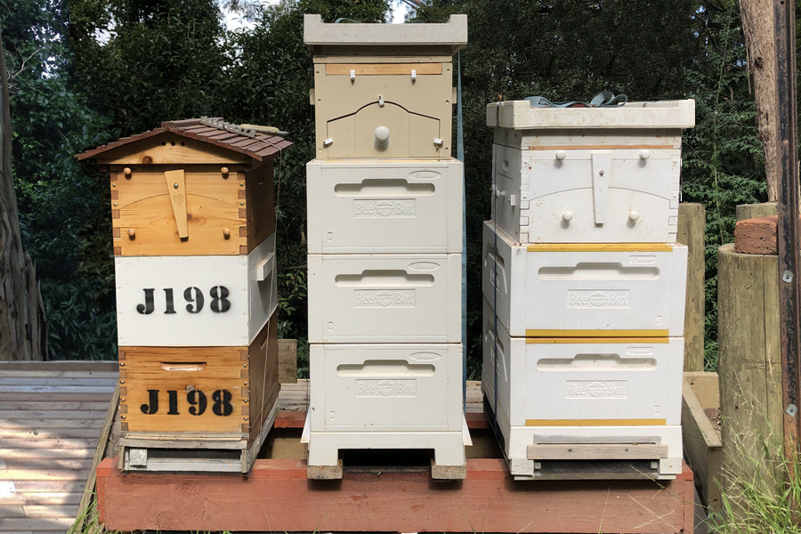 Our Original Hives