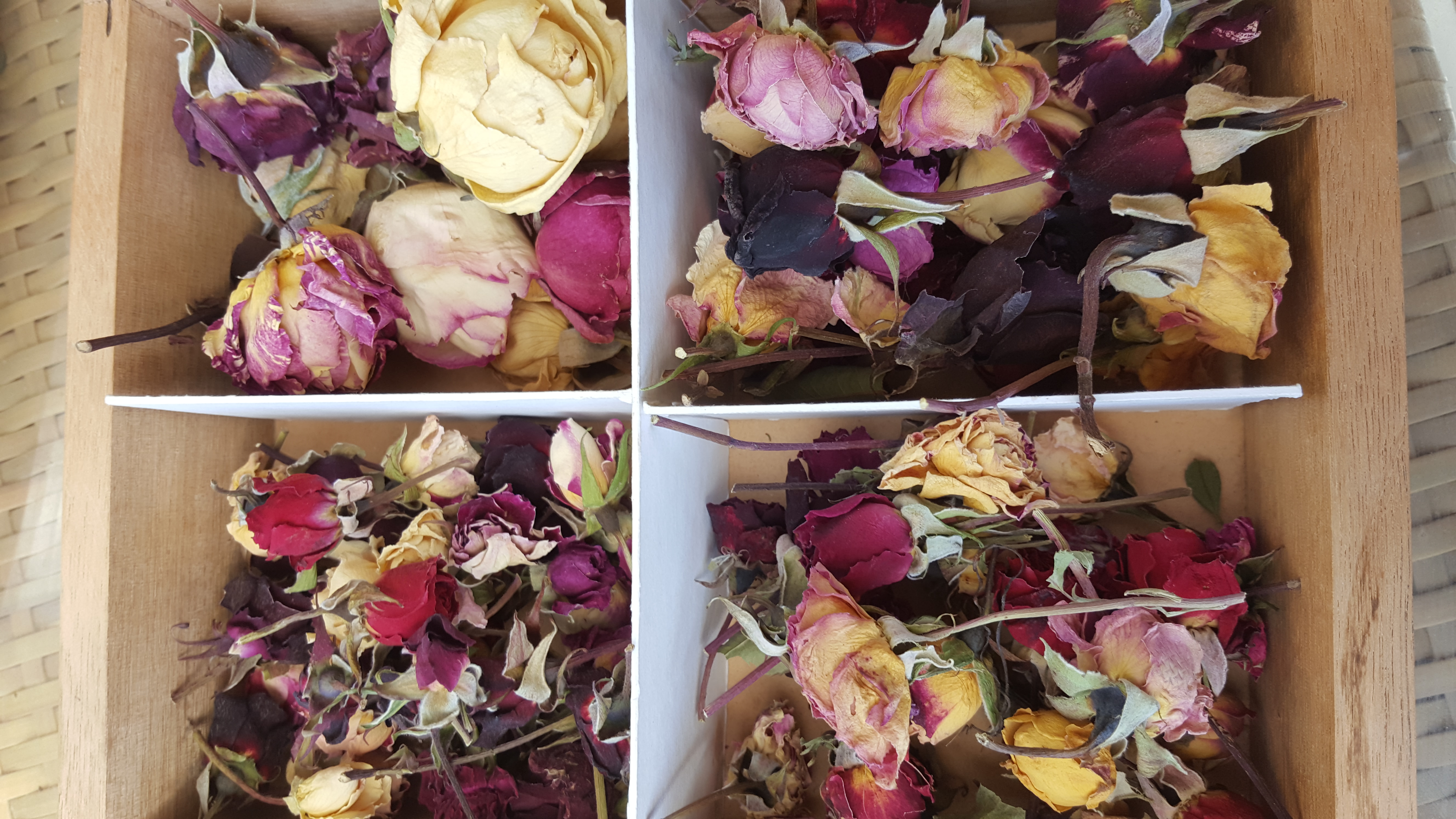 Rosebuds, mixed colours from mini size to large