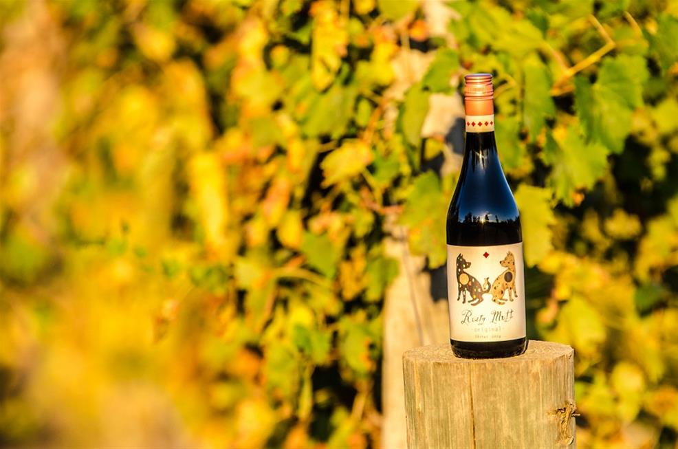 A bottle of Rusty Mutt Wine in the vineyard