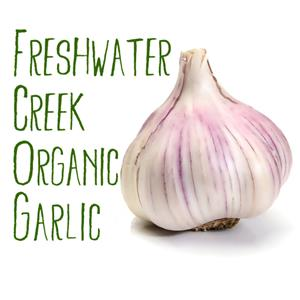 Freshwater Creek Organic Garlic